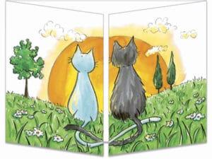 carte postale cache-cache ct244 famille chats fermée