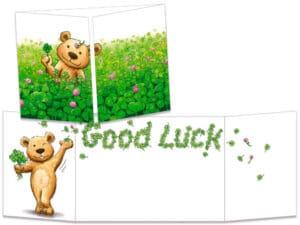 carte postale cache-cache ct303 ourson good luck