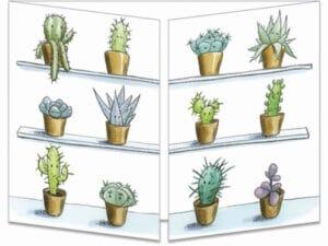 ct323 fiesta chez les cactus fermée
