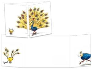 Carte postale cache-cache le poussin et le paon