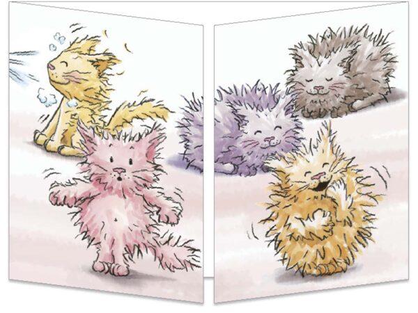 Carte postale cache-cache Les chatons ébouriffés